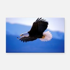 Bald Eagle flying Rectangle Car Magnet