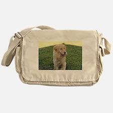 golden on grass Messenger Bag