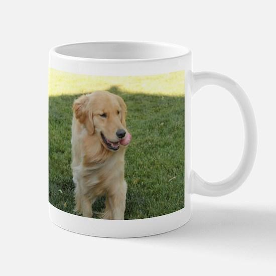 golden on grass Mugs