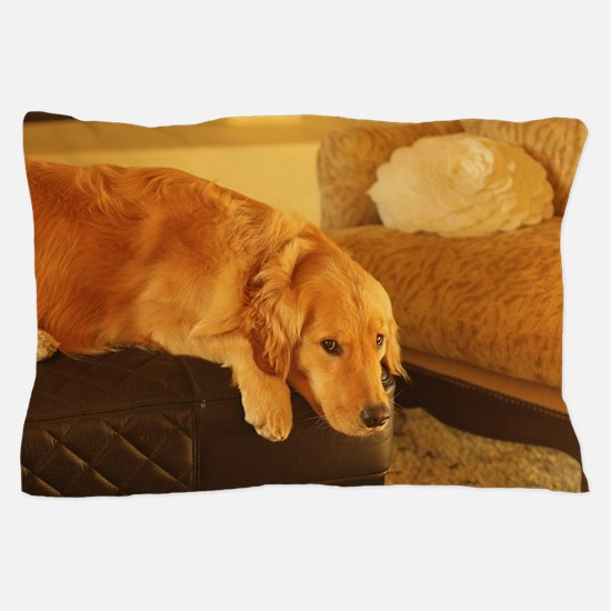 Funny Golden retriever Pillow Case