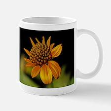 Big Yellow Wildflower in Texas Mug