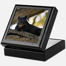 Black squirrel Keepsake Box