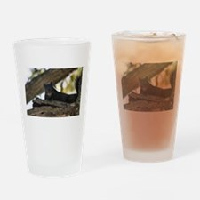 Funny Black squirrel Drinking Glass