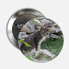 1 Cute Kitty Cat Button