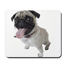 Pug Close Up Photo Mousepad