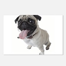 Pug Close Up Photo Postcards (Package of 8)