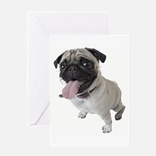 Pug Close Up Photo Greeting Cards
