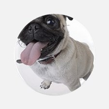 Pug Close Up Photo Button