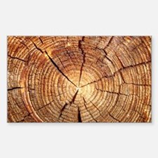 CROSS SECTION OF AN OLD TREE Sticker (Rectangle)