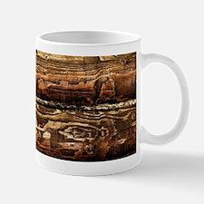DARK STAINED WOOD WALL Mug