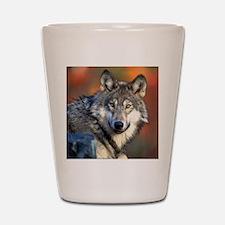 Wolf Photograph Shot Glass
