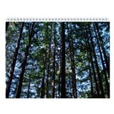 Muir woods Calendars