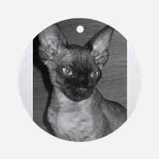 devon rex Round Ornament