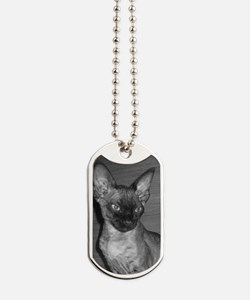 devon rex Dog Tags