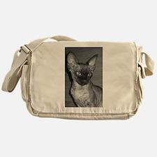devon rex Messenger Bag