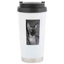 devon rex Travel Mug