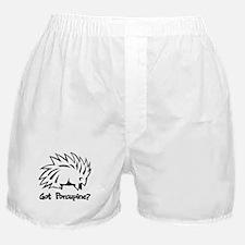 Got Porcupine? Boxer Shorts