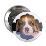 "CUTE DOG 2.25"" Button (100 pack)"