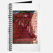 Rain Journal