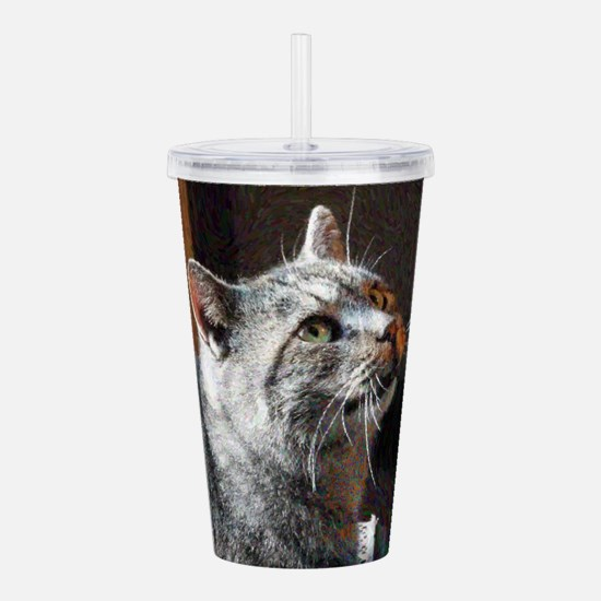 Handsome Tabby Former Acrylic Double-wall Tumbler
