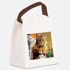 Beautiful Baby-Girl Kitty Canvas Lunch Bag