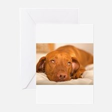 Unique Bed Greeting Cards (Pk of 20)