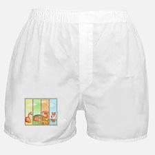 Season of the Foxes Boxer Shorts