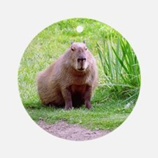 Capybara Looking Forward Ornament (Round)