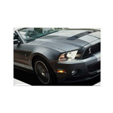 Cool Shelby gt500 Rectangle Magnet
