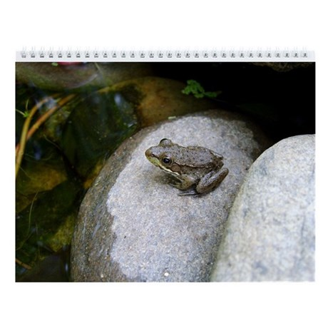 Frogs Monthly Calendar