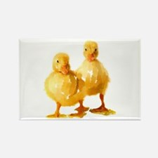 Ducklings Magnets