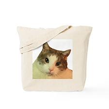 Scam Face Tote Bag