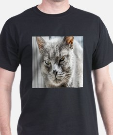 Funny Funny cat face T-Shirt