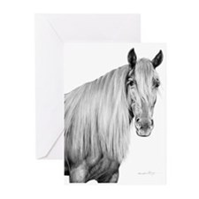 Unique Rocky mountain horse Greeting Cards (Pk of 20)