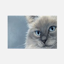Cute Ragdoll cats Rectangle Magnet (10 pack)