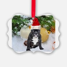 Cute Personalized first christmas pet Ornament