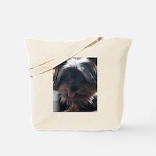 Mylee Yorkie Dog Tote Bag