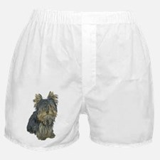 Yorkshire Terrier Photo Boxer Shorts