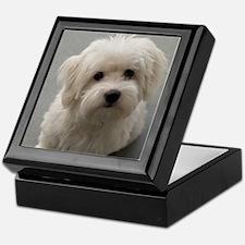 coton de tulear puppy Keepsake Box