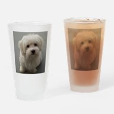 coton de tulear puppy Drinking Glass