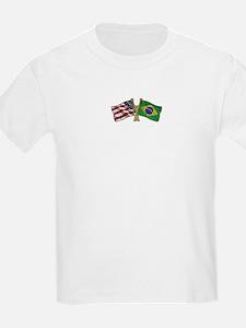 Brazil USA friendship flag T-Shirt