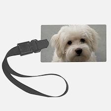 coton de tulear puppy Luggage Tag