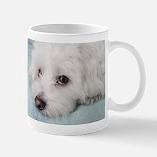 coton de tulear Mugs