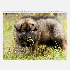 2016 Shiloh Puppy Wall Calendar