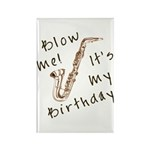 birthday horn blow me Rectangle Magnet (10 pack)