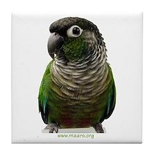 Green-Cheek Conure Tile Coaster