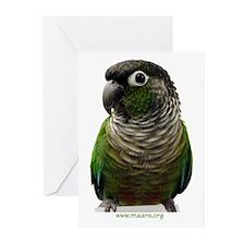 Green-Cheek Conure Greeting Cards (6)