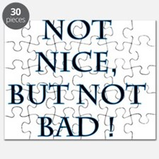 Nice and Bad Puzzle