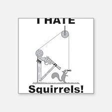 """Cute Squirrel funny Square Sticker 3"""" x 3"""""""
