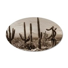 Stormy Winter in the Desert Wall Decal